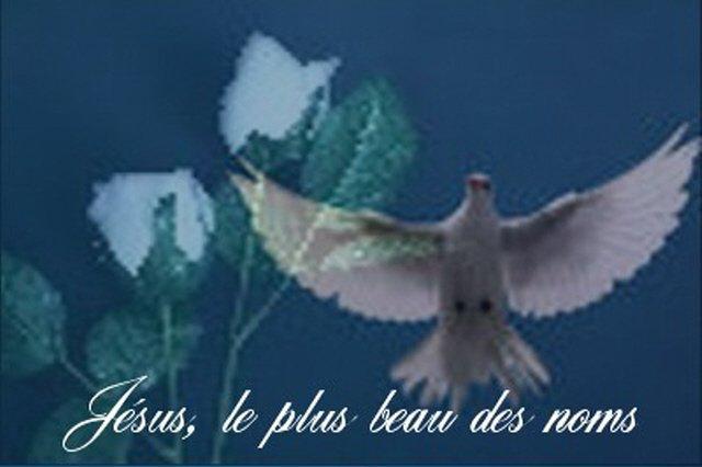 LES MERVEILLES ET LA PUISSANCE DU SAINT NOM DE JÉSUS... - Page 2 Mlange1